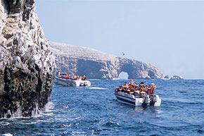 Tour en las Islas Ballestas
