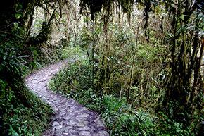 Inka Trail Machu Picchu